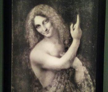 Da Vinci1